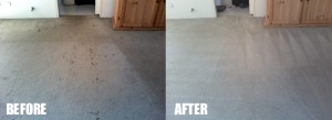 blue carpet steam cleaning